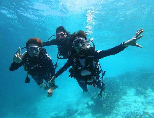 Discover Scuba Dive 體驗潛水