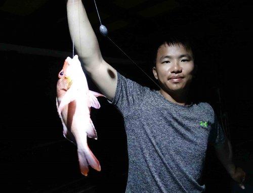 Night Fishing 夜釣