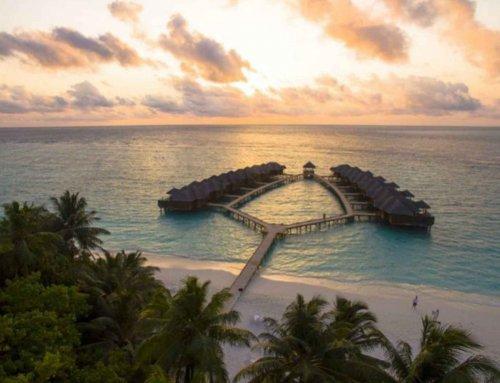 Fihalhohi Island Resort 菲哈后島
