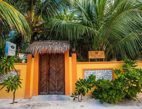 Stingray Beach Inn 魟魚沙灘溫馨民宿